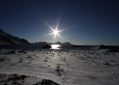 Bilde av et landskap på vinteren