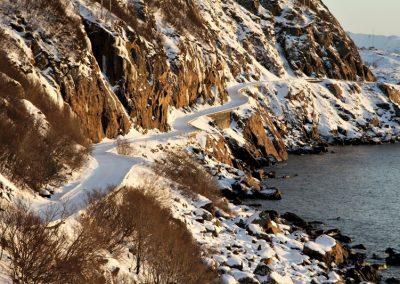 Bilde av Nyksund-veien